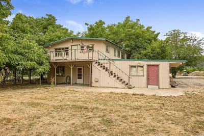 Lake County Single Family Home For Sale: 777 Pitney Lane