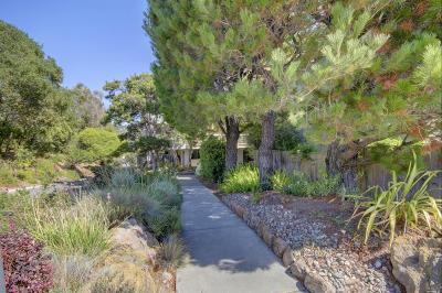 Marin County Condo/Townhouse For Sale: 320 Via Casitas Street #112