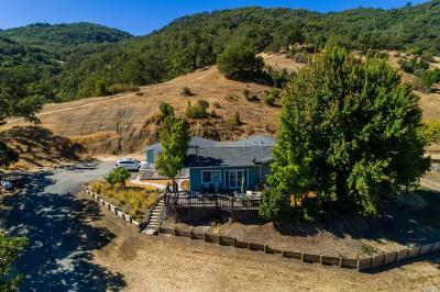 Ukiah CA Single Family Home For Sale: $995,000