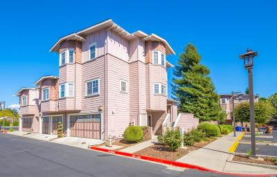 Napa Multi Family 2-4 For Sale: 205 Valley Oak Drive