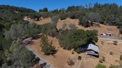 Healdsburg Single Family Home For Sale: 8349 West Dry Creek Road