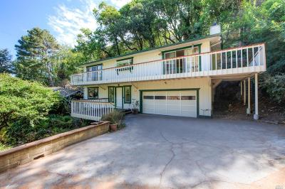 Mill Valley Single Family Home For Sale: 669 Northern Avenue