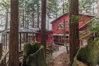 Guerneville Single Family Home For Sale: 18602 Old Monte Rio Road