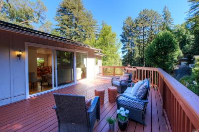 San Anselmo Single Family Home For Sale: 53 Canyon Road