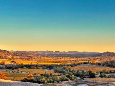Sonoma County Residential Lots & Land For Sale: 500 Artisan Circle