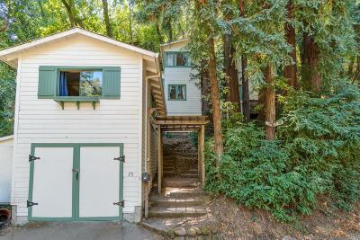 Fairfax Single Family Home For Sale: 73 Tamalpais Road