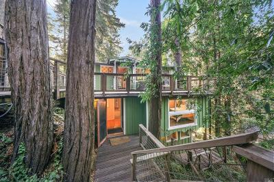 Guerneville Single Family Home For Sale: 18433 Old Monte Rio Road