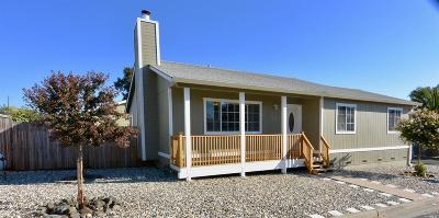 Lakeport Single Family Home For Sale: 170 Island View Drive