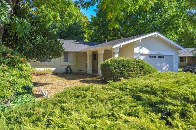 Concord Single Family Home For Sale: 1501 Rugby Court