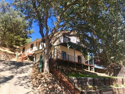 Lakeport Single Family Home For Sale: 1024 Adams Street