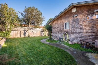 Ukiah Single Family Home For Sale: 161 Zinfandel Drive