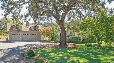 Angwin Single Family Home For Sale: 1225 Summit Lake Drive