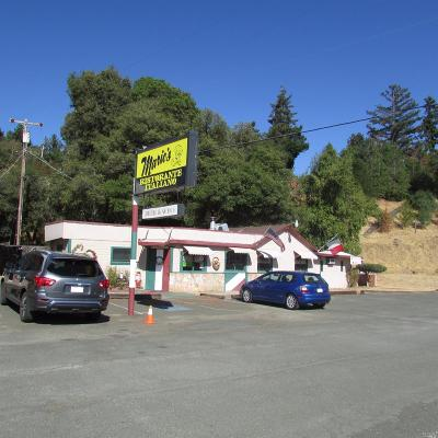Redwood Valley Commercial For Sale: 9601 North State Street