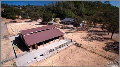 Lake County  Farm & Ranch For Sale: 16050 South State Hwy 29