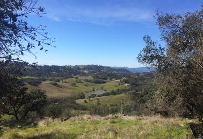 Lake County, Marin County, Mendocino County, Napa County, Sonoma County Residential Lots & Land For Sale: 4500 Wallace Road
