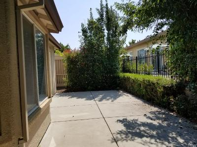 Rio Vista Single Family Home For Sale: 407 Conway Drive