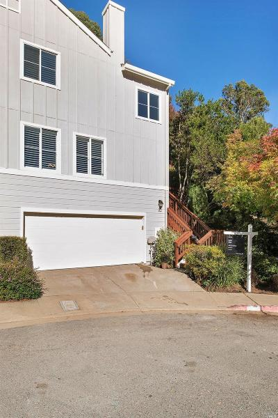 Marin County Condo/Townhouse For Sale: 32 Braun Court