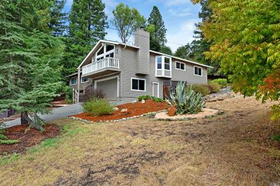 Healdsburg Single Family Home For Sale: 1436 University Street
