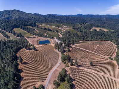Mendocino County Commercial For Sale