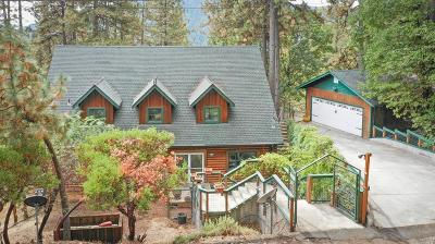 Lake County Single Family Home For Sale: 9685 St. Helena Drive #Cobb