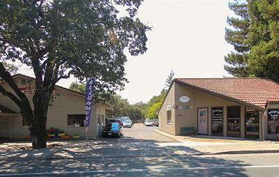 Sonoma CA Commercial For Sale: $1,095,000