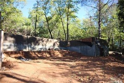 Kelseyville Residential Lots & Land For Sale: 10182 Diener Drive