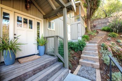 Marin County Single Family Home For Sale: 31 Roberts Avenue
