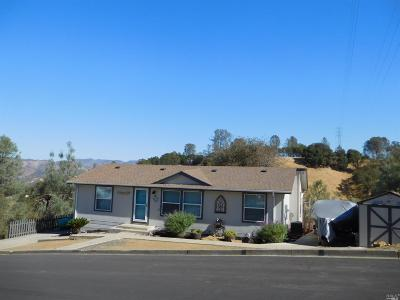Napa Single Family Home For Sale: 1066 Rimrock Drive