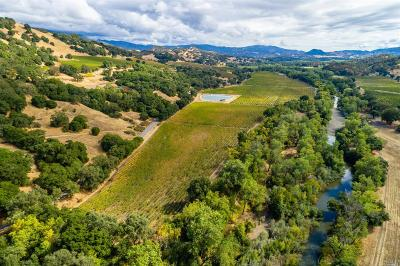 Lake County, Marin County, Mendocino County, Napa County, Sonoma County Residential Lots & Land For Sale: 10400 Old River Road