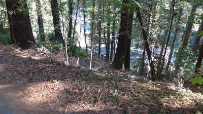Guerneville Residential Lots & Land For Sale: 14023 Solaridge Road