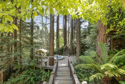 Guerneville, Monte Rio, Cazadero, Forestville Single Family Home For Sale: 2880 Austin Creek Road