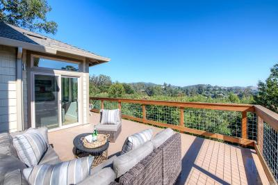 Mill Valley Single Family Home For Sale: 14 Madrone Park Circle
