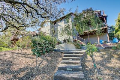 Napa County Single Family Home For Sale: 10 Skycrest Way