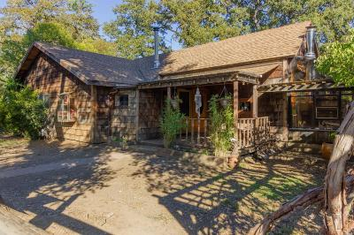 Redwood Valley Single Family Home For Sale: 9049 East Road