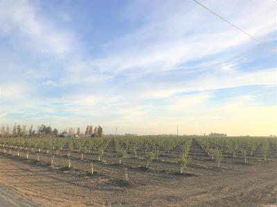 Vacaville Residential Lots & Land For Sale: 5751 Fry Road
