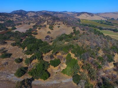 Napa Residential Lots & Land For Sale: Sonoma Highway