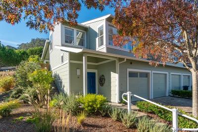 Marin County Condo/Townhouse For Sale: 15 Terrace Drive
