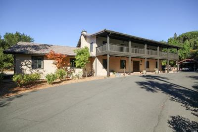Solano County Single Family Home For Sale: 1877 Vintage Lane
