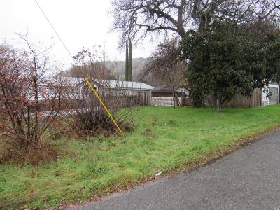 Lake County Residential Lots & Land For Sale: 12902 1st Street