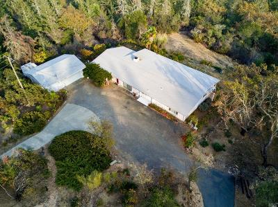 Napa Single Family Home For Sale: 2201 Mount Veeder Road
