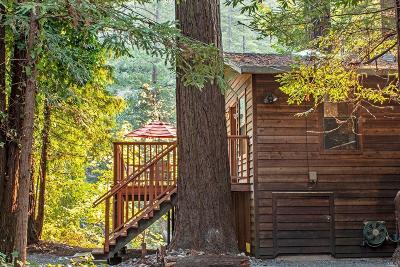 Camp Meeker, Cazadero, Duncans Mills, Forestville, Guerneville, Jenner, Monte Rio Single Family Home For Sale: 3460 Cazadero Highway