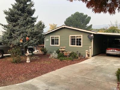 Lake County Single Family Home For Sale: 13822 Lemon Circle