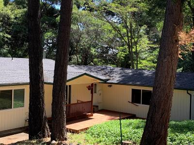 Kelseyville Single Family Home For Sale: 2904 Buckingham Drive
