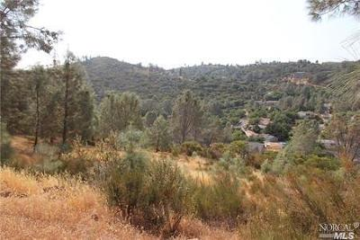 Kelseyville Residential Lots & Land For Sale: 4720 Iroquois Trail