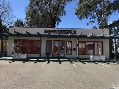 Santa Rosa CA Commercial For Sale: $799,950