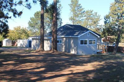 Sebastopol Single Family Home For Sale: 5933 Gravenstein Highway South