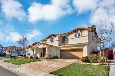Vacaville Single Family Home For Sale: 379 Frisbie Circle