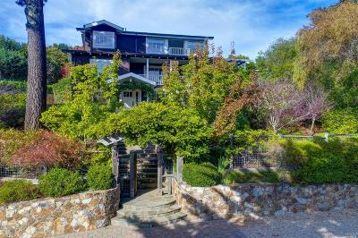Mill Valley Single Family Home For Sale: 32 Edgewood Avenue