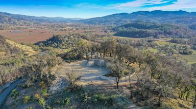 Calistoga Residential Lots & Land For Sale: 3610 State Highway 128