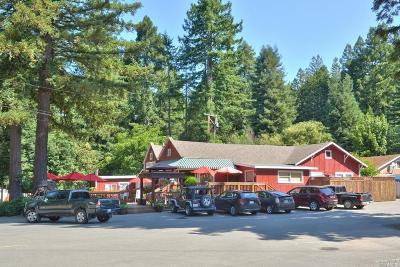 Lake County, Marin County, Mendocino County, Napa County, Sonoma County Commercial For Sale: 231 Wendling Street